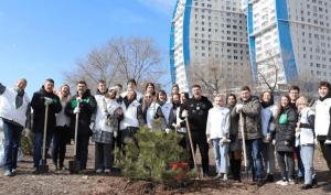 В Волгограде в пойме реки Царица высадили хвойную аллею