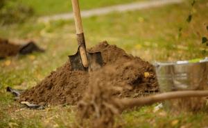 В ЦПКиО в Волгограде начали сажать деревья