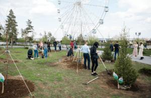 «Высадим дубы и ели, откроем Париж и гусеницу»: в ЦПКиО Волгограда начали подготовку к сезону посева