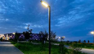 В ЦПКиО отметят Всероссийский олимпийский день