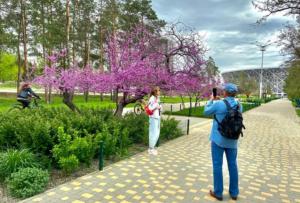 Где отдохнуть в 2021 Волгоград